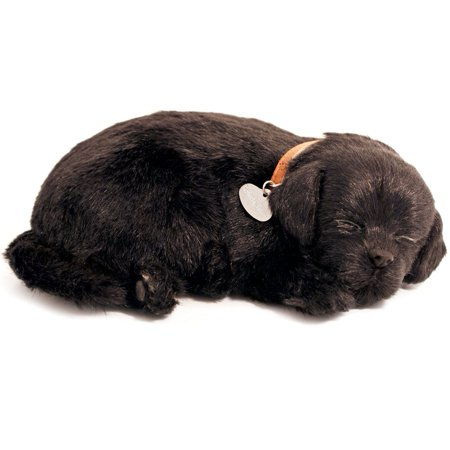 Perfect Petzzz Black Lab #48 With New Softer Body