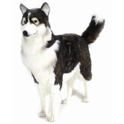 Life Size Adult Husky Dog Plush Stuffed Animal in Black & Beige
