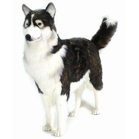 life size adult husky dog plush stuffed animal in black beige. Black Bedroom Furniture Sets. Home Design Ideas