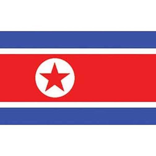 "North Korea Flag On A Stick 12"" x 18"""
