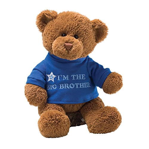 Gund T Shirt Message Teddy Bear Stuffed Animal Big Brother