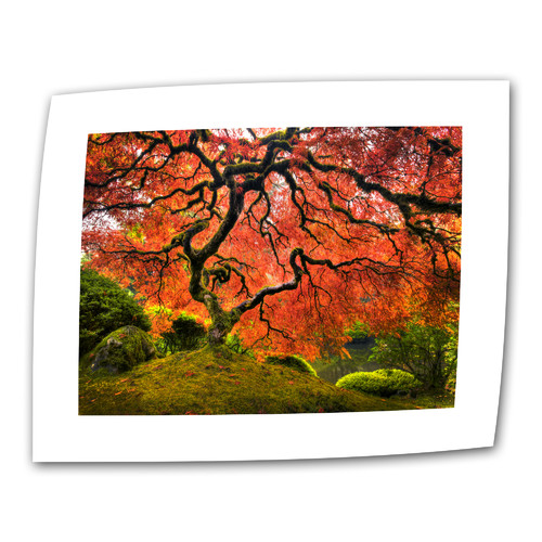ArtWall ''Japanese Tree'' by John Black Photographic Print on Canvas