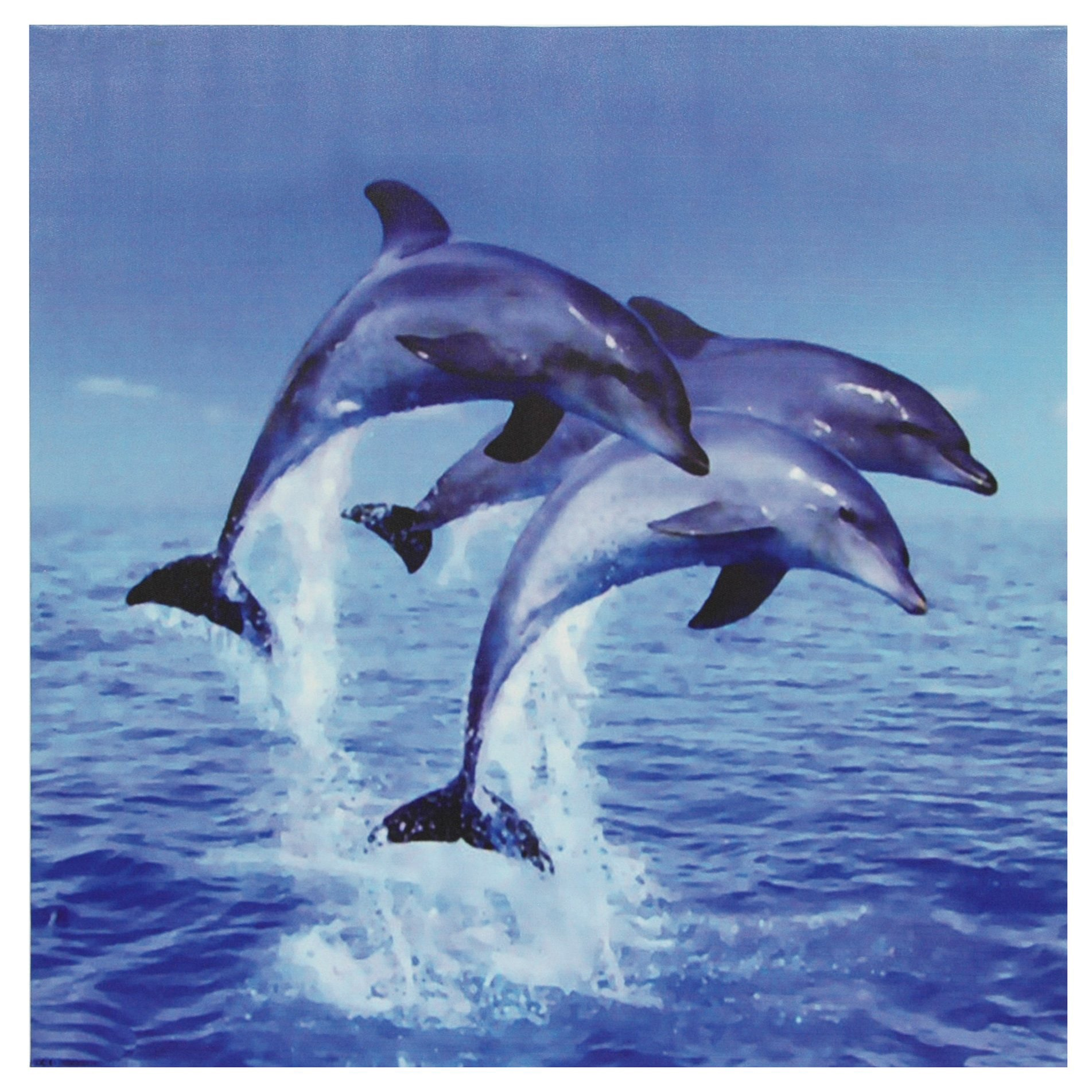 Oriental Home Three Rising Dolphins Canvas Wall Art