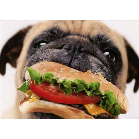 Avanti Press Dog Eats Cheeseburger Funny Pug Birthday - Dog Birthday Card