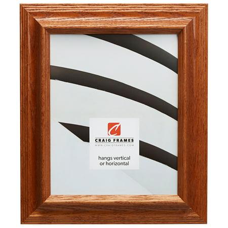 Craig Frames Wiltshire 262, Traditional Brown Solid Wood Picture Frame, 10 x 13 (Brown Solid Wood Frame)