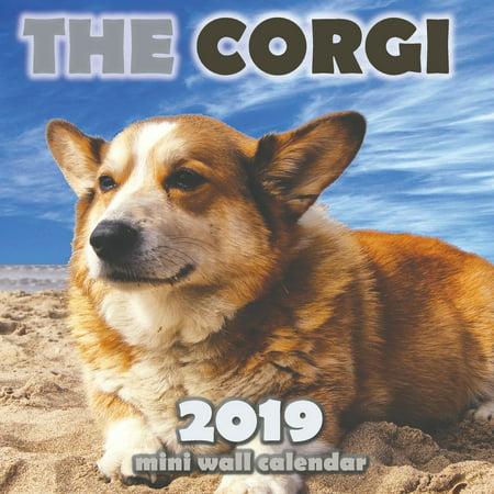 The Corgi 2019 Mini Wall Calendar (Welsh Corgis 2010 Calendar)