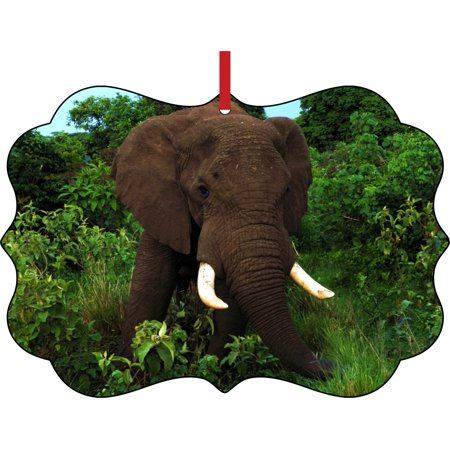Ornament Elephant African Elephant in the Jungle Elegant Semigloss Aluminum Christmas Ornament Tree Decoration - Unique Modern Novelty Tree Décor Favors - Jungle Tree Decorations