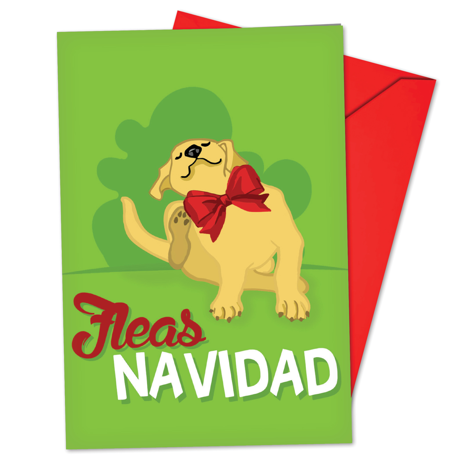 'B6737GXSB Merry Pets Christmas Cards' Box Set of 12 Funny Merry Christmas Note Cards with Envelopes by NobleWorks