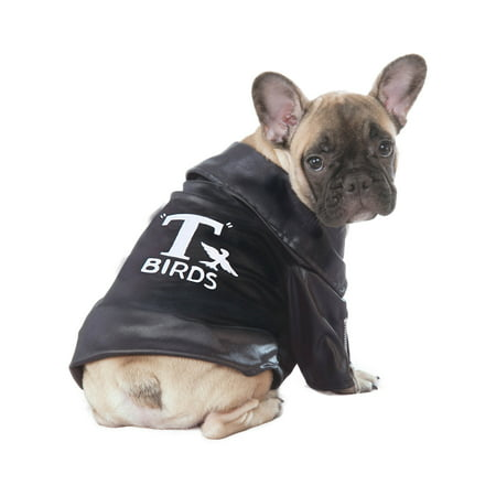 Grease T-Birds Jacket Pet Halloween Costume - Cheap Grease Costumes