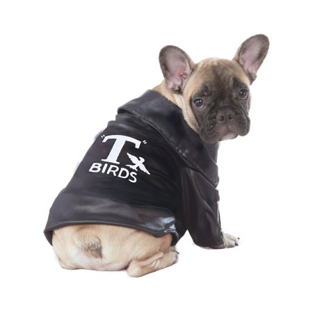 Grease T-Birds Jacket Pet Halloween Costume (Halloween Costume Ideas Trench Coat)