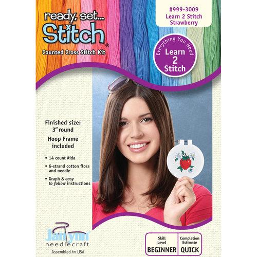 Janlynn Learn To Stitch Strawberry Cross-Stitch Kit with Frame