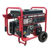 All Power 12000 Watt Dual Fuel Generator w/Electric Start, Gas/Propane Power Portable Generator, APGG12000GL
