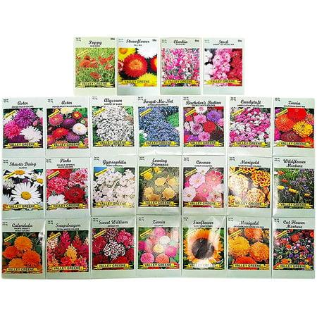 Set of 25 Deluxe Variety Flower Seed - Lisianthus 25 Seeds