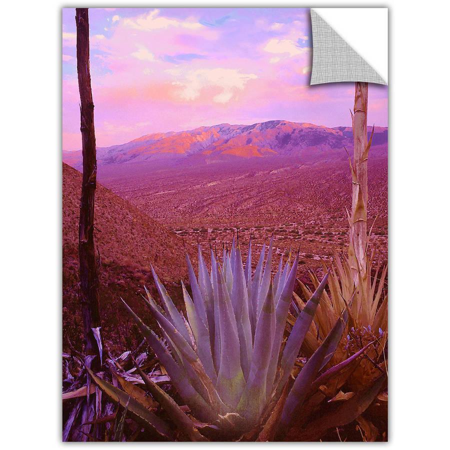 Dean Uhlinger Desert Cycle, Art Appeelz Removable Wall Art Graphic