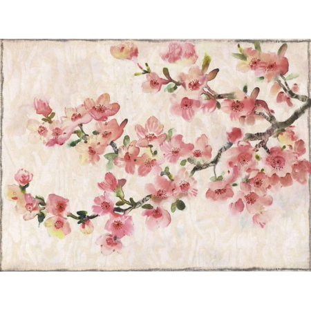 Cherry Blossom Composition I Pink Spring Flower Artwork Print Wall Art By Tim