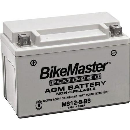 bikemaster agm platinum ii battery bmw k 1100lt 1993. Black Bedroom Furniture Sets. Home Design Ideas