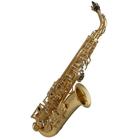 Ravel by Gemeinhardt RGA202 Alto Sax by