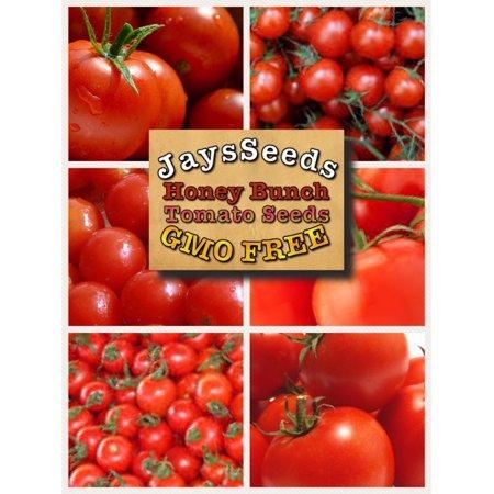 Honey Bunch Cherry Tomato (Non-GMO) Seeds