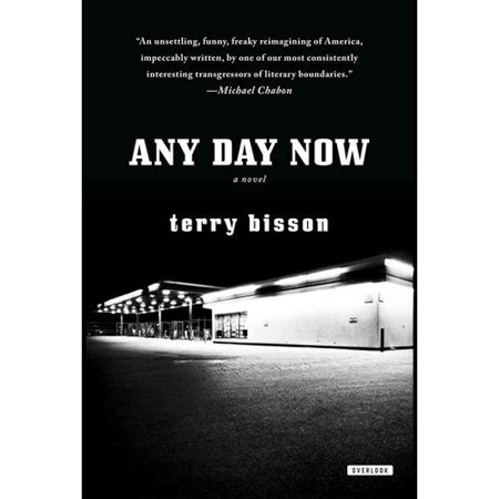 Any Day Now: A Novel by