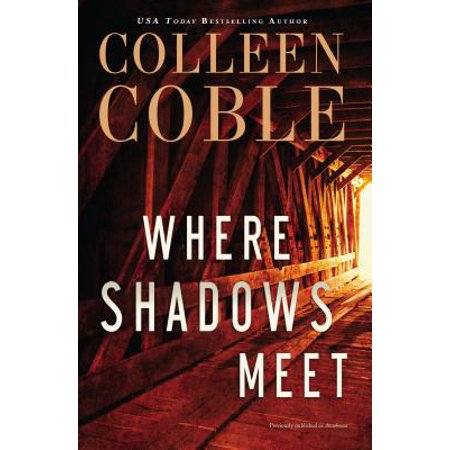 Where Shadows Meet : A Romantic Suspense Novel