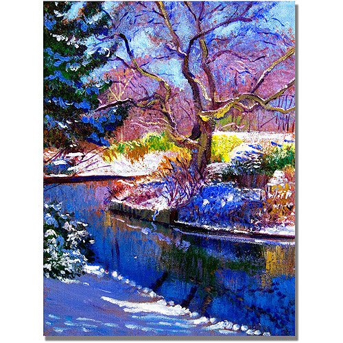 "Trademark Art ""Snowy Park"" Canvas Wall Art by David Lloyd Glover"