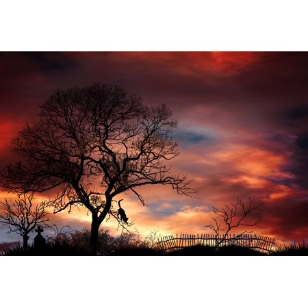Framed Art for Your Wall Trees Mystical Tombstone Mood Cemetery Landscape 10x13 Frame - Tombstones For Sale