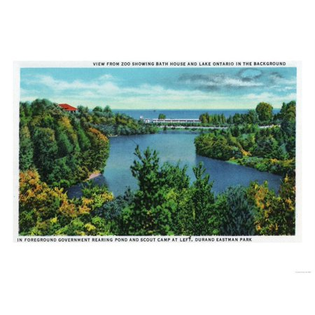 Rochester, NY - Rochester Zoo View of Lake Ontario and Durand Eastman Park Print Wall Art By Lantern Press ()