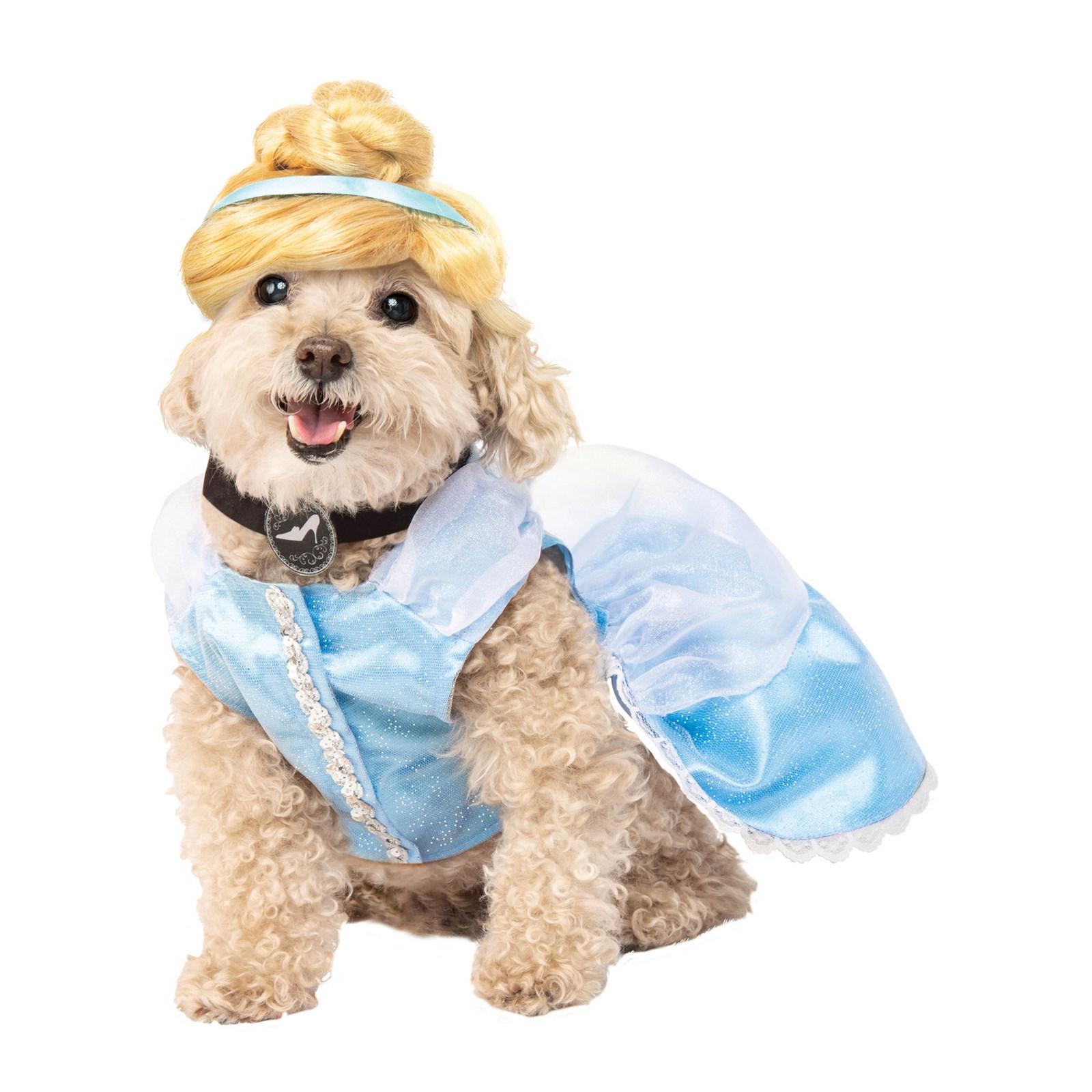 Cinderella Pet Costume