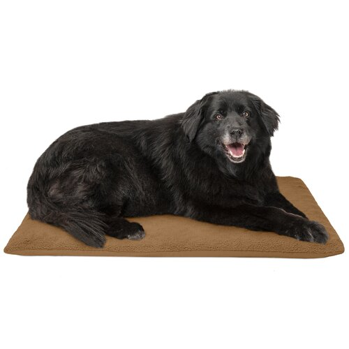 Tucker Murphy Pet Candy Terry Top Ortho Dog Bed