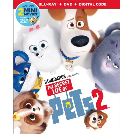 The Secret Life of Pets 2 (Blu-ray + DVD)