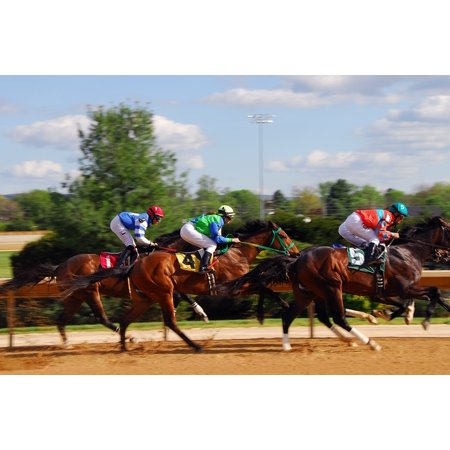 Canvas Print Racehorse Power Equestrian Race Horse Racing Speed Stretched Canvas 10 x 14