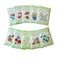 10 Seed Packets Renees Irresistible Scented Sweet Peas Collection