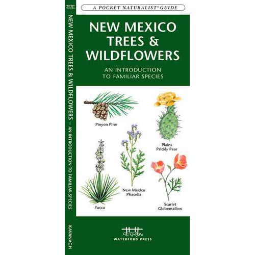 New Mexico Trees & Wildflowers: An Introduction to Familiar Species