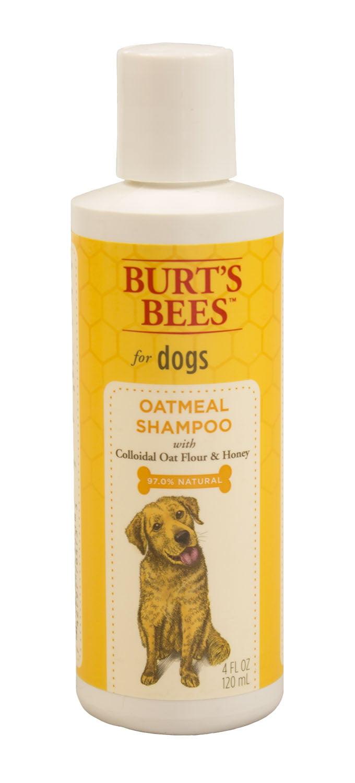Burts Bees Oatmeal Dog Shampoo by Fetch for pets