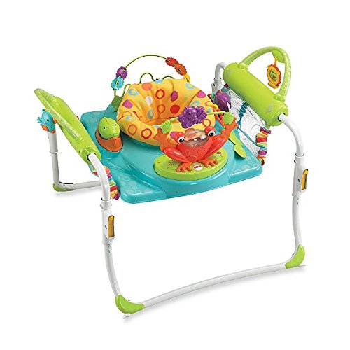 Fisher Price First Steps Jumperoo�