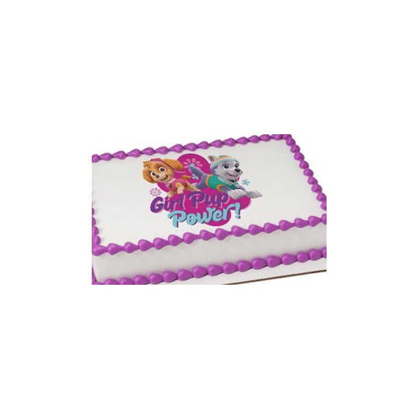Fine Paw Patrol Girl Pup Power Edible Extra Large 8 X 10 Cake Funny Birthday Cards Online Aeocydamsfinfo