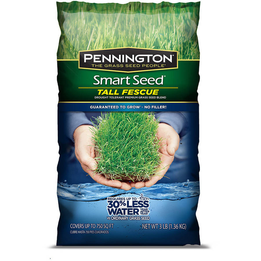 Pennington Smart Seed , Tall Fescue Blend Grass Seed, 3 lbs