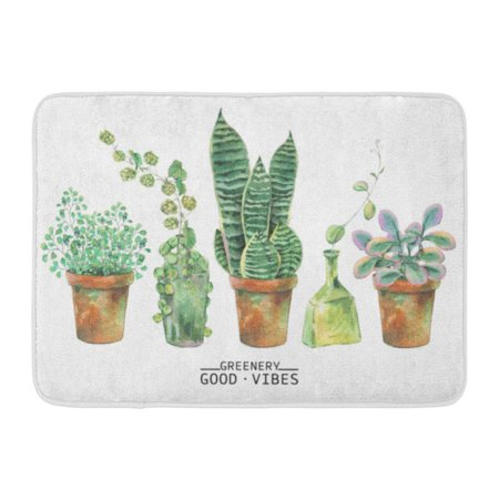 GODPOK Sketch Flower Watercolor Green Plants in Pots Natural White Greenery Botanical Leaf Spring Rug Doormat Bath Mat 23.6x15.7 inch