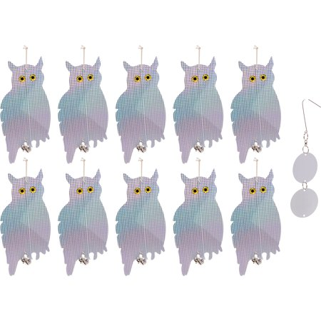 10 Pack Holographic Owl Bird Scare Repeller - Reflective Hanging Bird  Deterrent, Effective for Pigeons, Woodpeckers, and More by Reusable  Revolution -