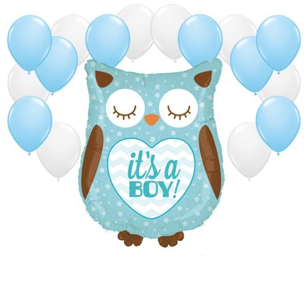 Owl with Baby Blue and White Balloons Party Decor Kit](Owl Party Ideas)