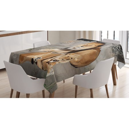 Zoo Tablecloth, Male and Female Lions Basking in the Sun Wild Cats Habitat King of Jungle, Rectangular Table Cover for Dining Room Kitchen, 52 X 70 Inches, Light Brown Grey Yellow, by Ambesonne - Lion King Table Cover