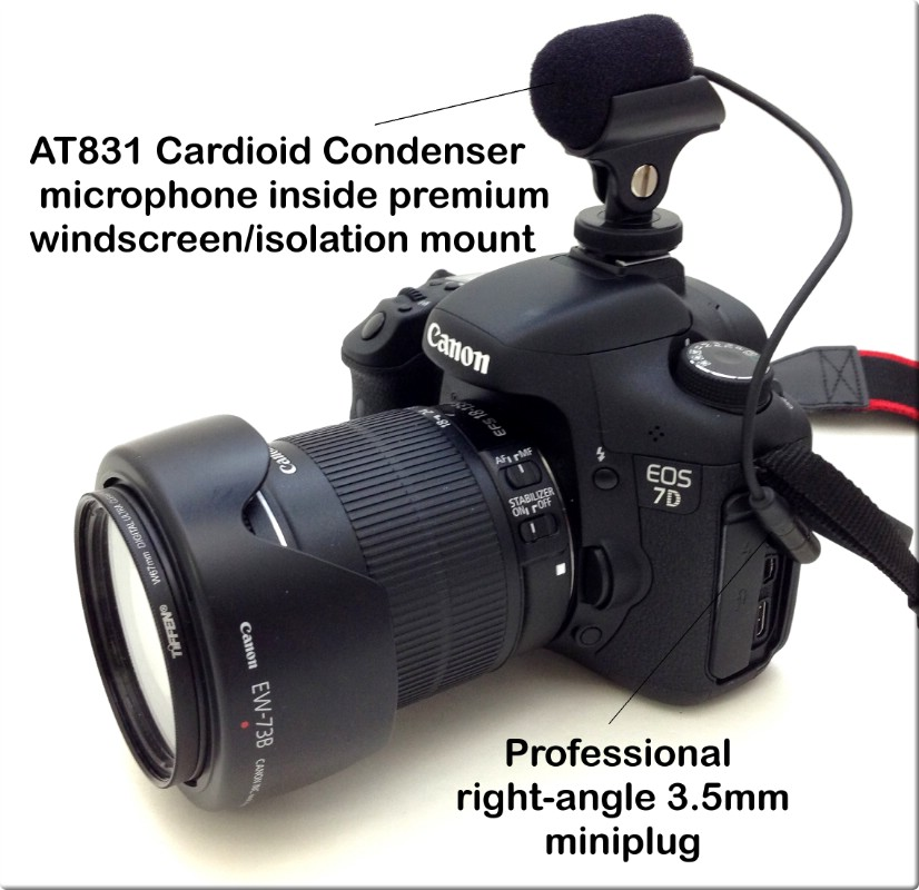 AT831-DSLR Sound Professionals AT831 Audio Technica Cardioid Microphone for mounting on a... by Sound Professionals
