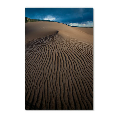 Trademark Fine Art 'Desert Design' Canvas Art by Dan Ballard