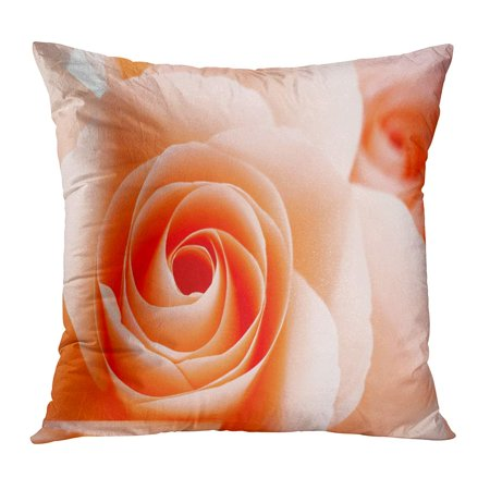 ECCOT Pink Affection Orange Rose Abstract Beautiful Red Anniversary Aroma Bloom Blossom Board Pillowcase Pillow Cover Cushion Case 20x20 inch ()