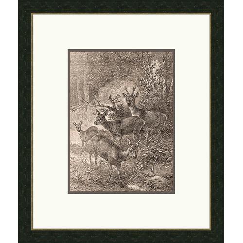 Melissa Van Hise Forest Dwellers lV Framed Graphic Art