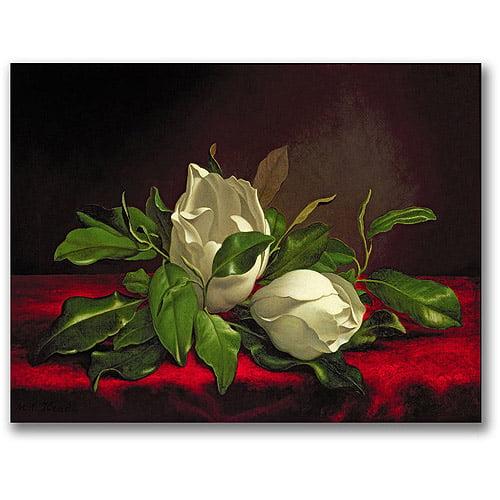 "Trademark Fine Art ""Magnolia"" Canvas Wall Art by Martin Heade"