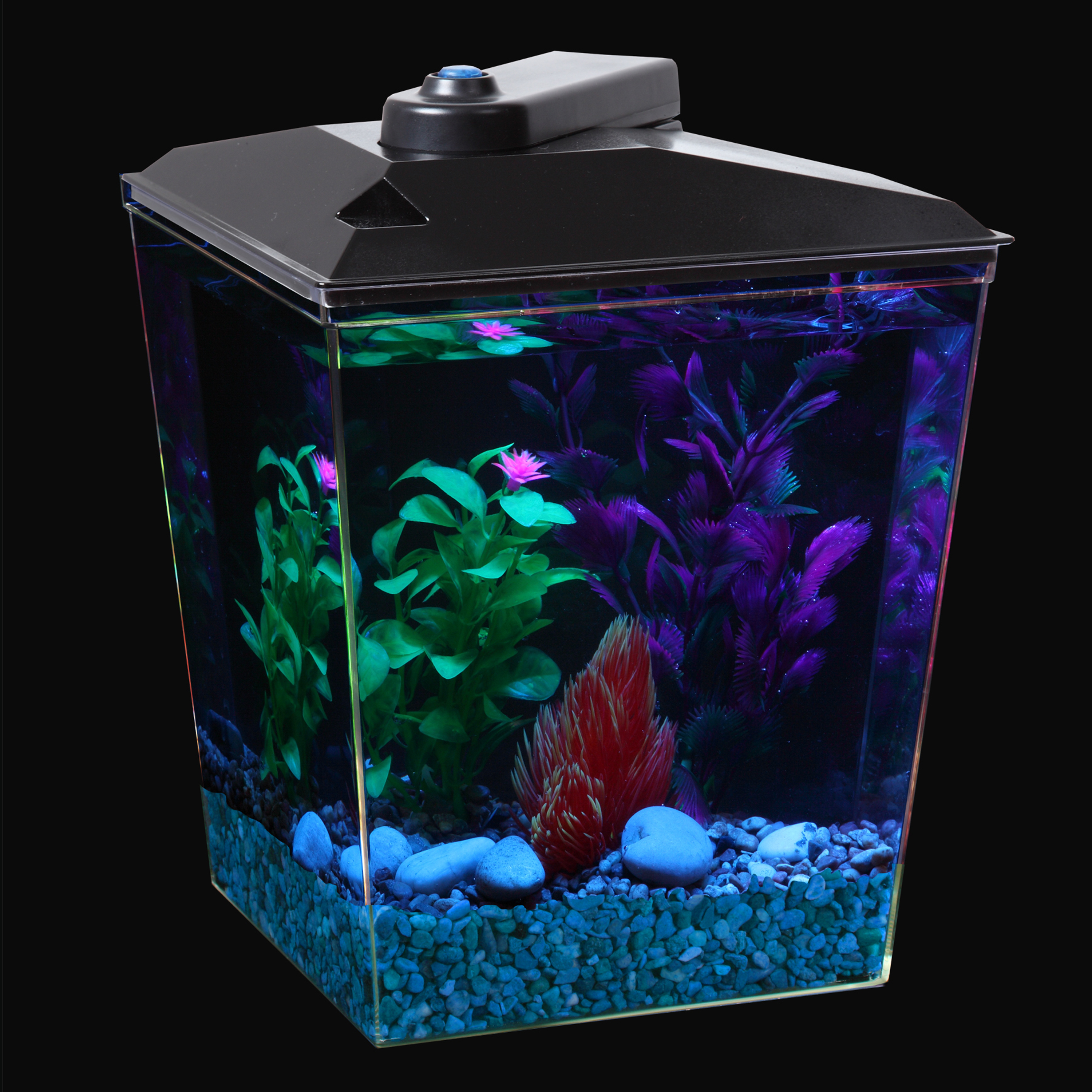 Aqua Culture Aquarium Kit LED Lighting and Internal Power Filter 1