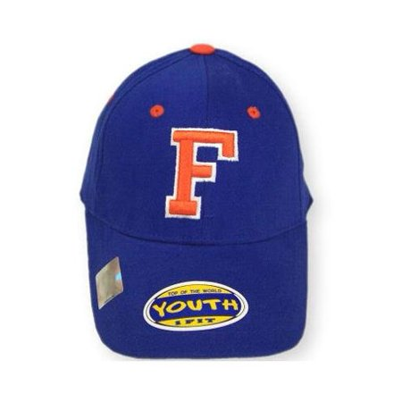save off 1b59e 75a24 Florida Gators Official NCAA Youth Adjustable Cotton Hat Cap by Top Of The  World - Walmart.com