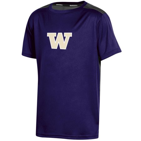 Youth Russell Purple Washington Huskies Color Block (Washington Huskies Purple Arch)