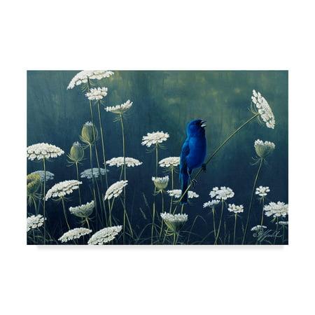 - Trademark Fine Art 'Indigo And Lace Indigo Bunting' Canvas Art by Wilhelm Goebel
